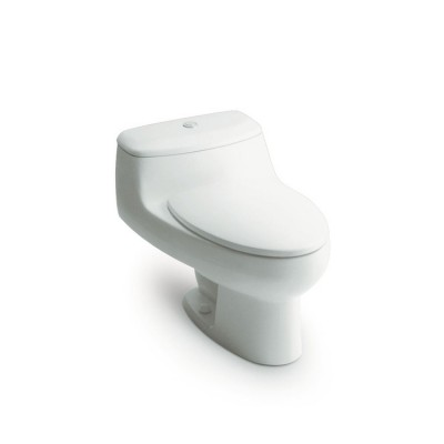 Roca Chicago One piece WC with vertical outlet. S-Trap 305 mm