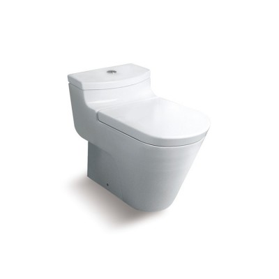 Roca Oslo One piece WC with vertical outlet. S-Trap 305 mm (cUPC)